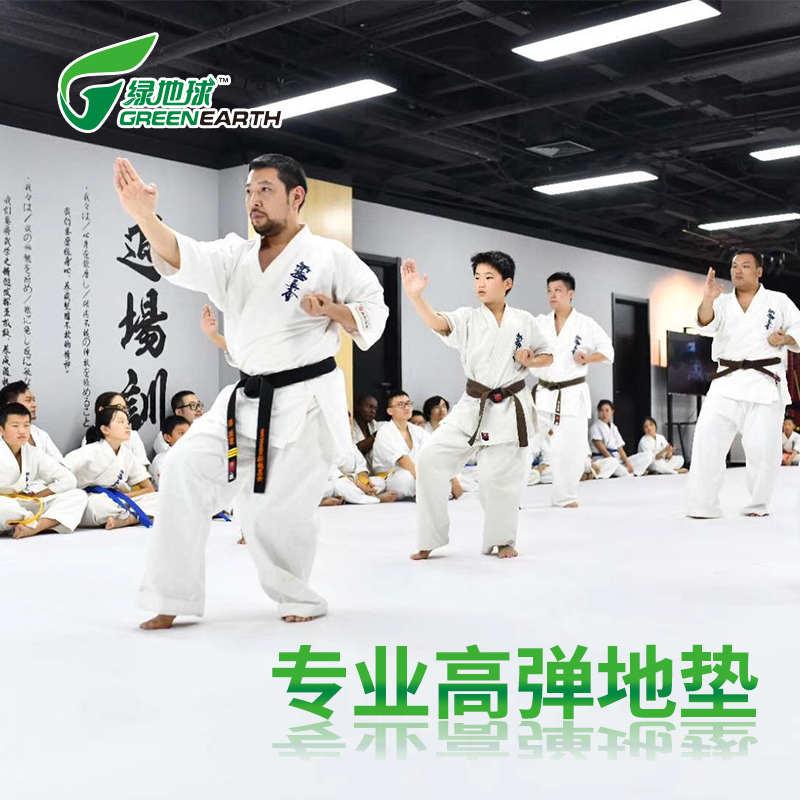 绿地球跆拳道垫健身搏击地垫柔道卷帘垫子xpe高弹地胶