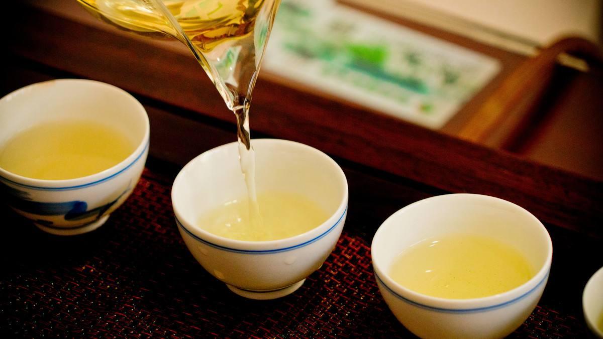 吉林蒲公英茶-保定口碑好的蒲公英茶厂家