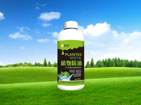 山东植物精油价格|潍坊口碑好的植物精油供应商