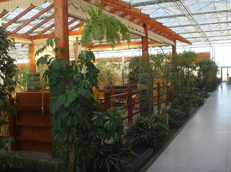 生态餐厅供应-生态餐厅造价是多少