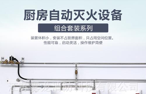 辽宁好的厨房灭火装置厂家-苏州高性价厨房设备灭火装置CMDS13-1-YH推荐