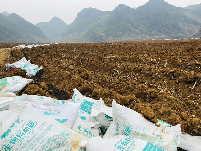 南宁生物有机肥-销量好的生物有机肥哪里有供应