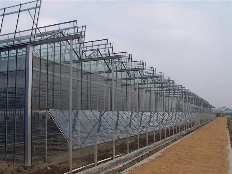 智能玻璃温室大棚建造,玻璃温室建造质量哪家好-利广