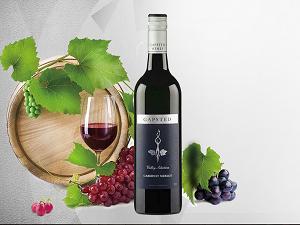 格比斯蒂家族珍藏赤霞珠梅洛干红葡萄酒