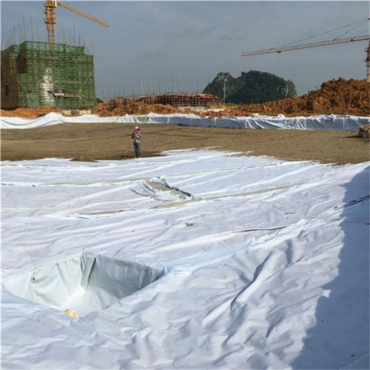 廣西復合土工膜-廣西地區有品質的復合土工膜