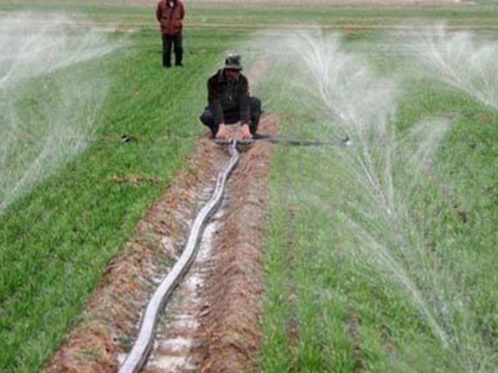 宁夏微喷带-宁夏顺雨节水灌溉性价比高的出售_宁夏微喷带价格