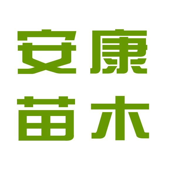 临沂临港经济开发区安康苗木专业合作社