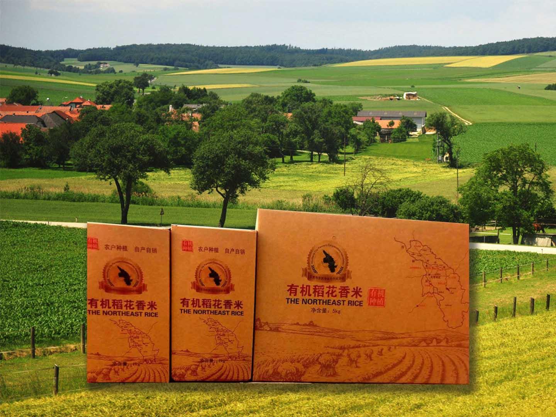 舌尖上的中国之--五常大米,五常稻花香,龙玉田水稻让您放心购