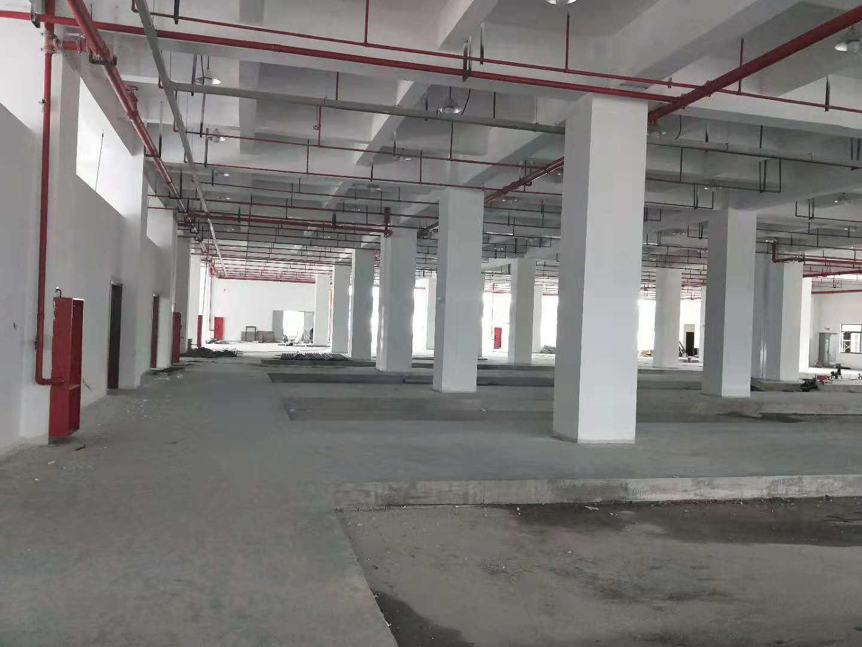 吴江平望分割单层厂房3300平米层高12米