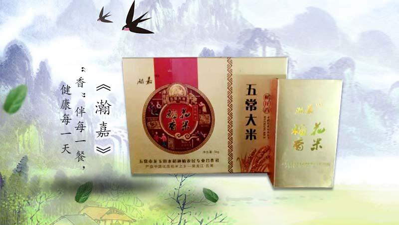 黑龙江五常大米|黑龙江东北大米-五常市龙玉田水稻种植合作社