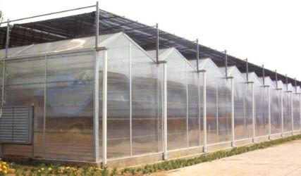 【行业领军】高温连栋大棚多少钱 玻璃板温室建造价格-诚誉温室