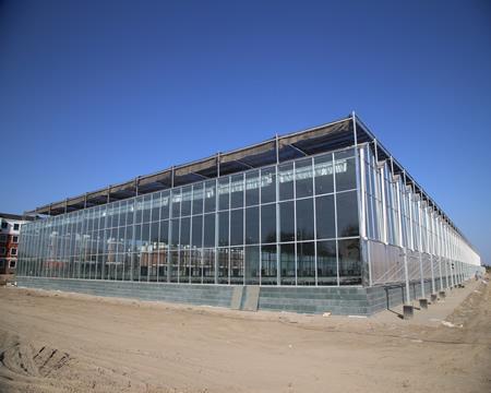 临沂温室大棚 温室建设 大棚建设 连栋温室建设厂家