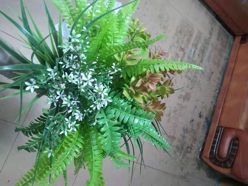蘭州阻燃仿真植物-哪里供應的阻燃花質優價美
