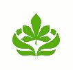 青海老芒麥種子-青海披堿草種子廠商批發