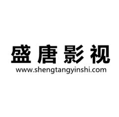 渭南盛唐影视文化传播有限公司