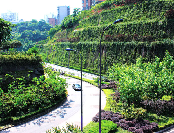 周到的园林绿化养护-可信赖的园林绿化养护推荐