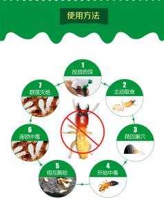 勒流白蚁防治哪家强|坚文白蚁防治_只做专业的白蚁防治