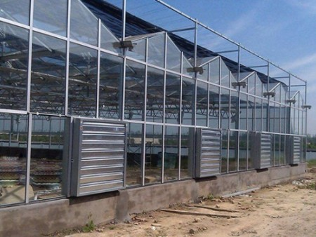 纹络温室设计,纹络温室建设,纹络温室建造