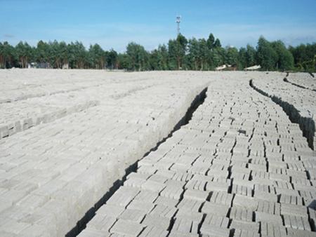 厂家直销的环保砖|湛江高销量的环保砖