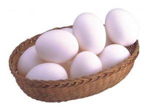 中国可口的鸡蛋,报价合理的鸡蛋河南益隆供应
