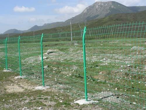 护栏网厂家厂商-大量供应好用的护栏网