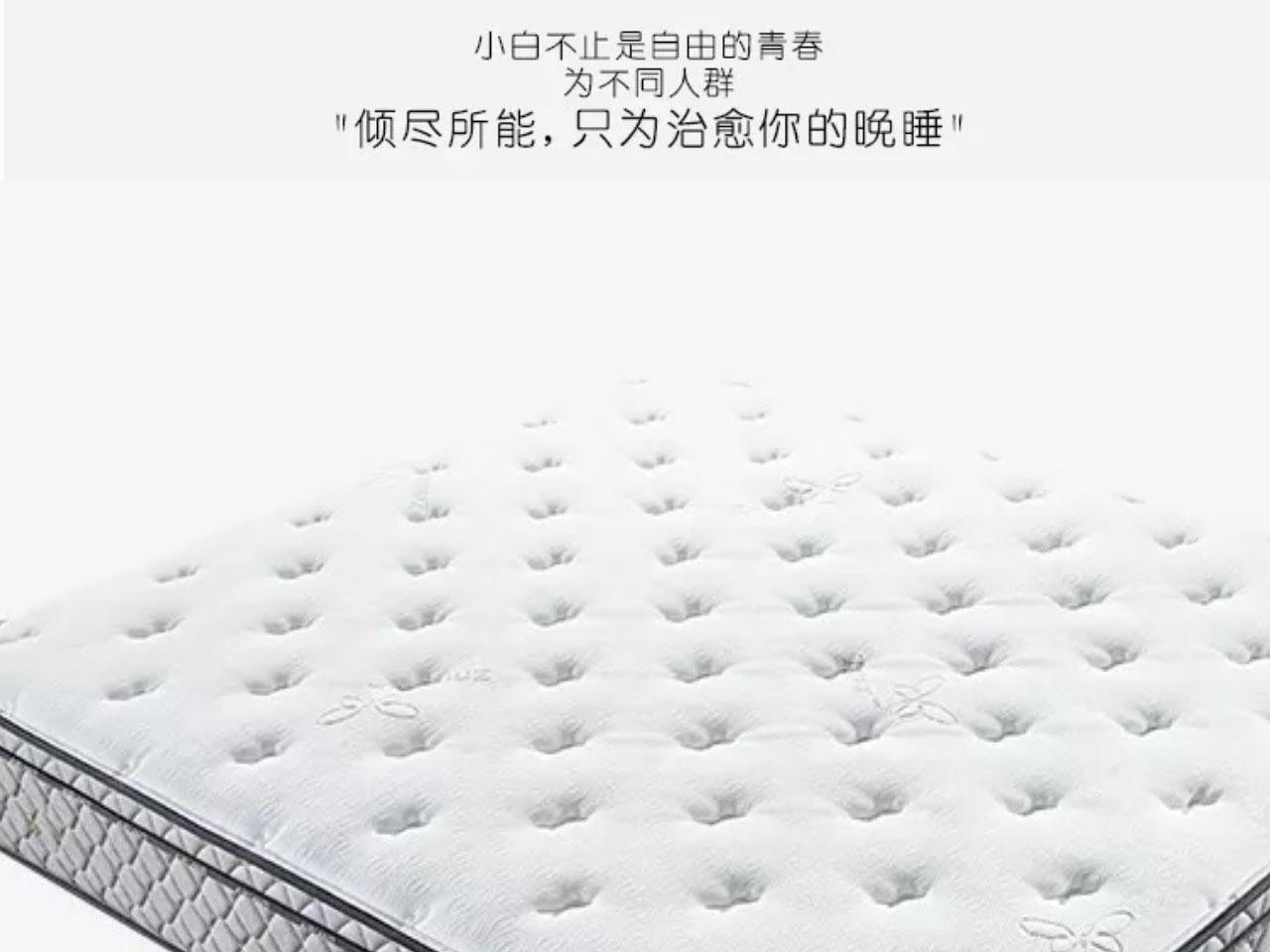 床垫公司-热销安睡6905环保棕品质保证