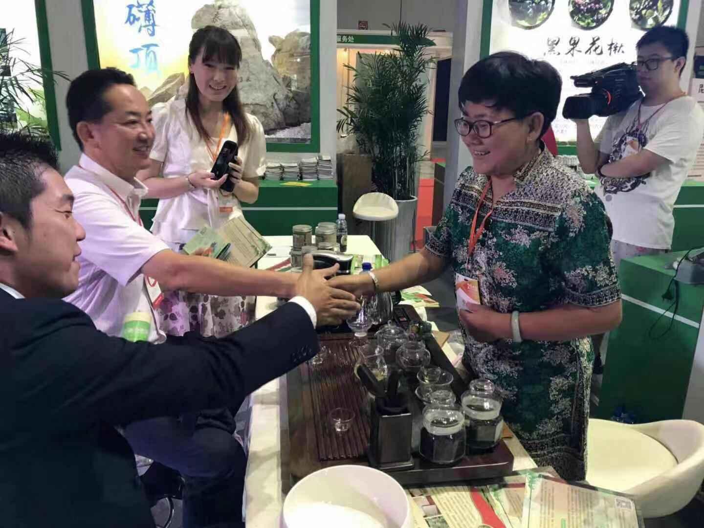 【君沅茶场】茶业种植基地 北方茶业种植基地