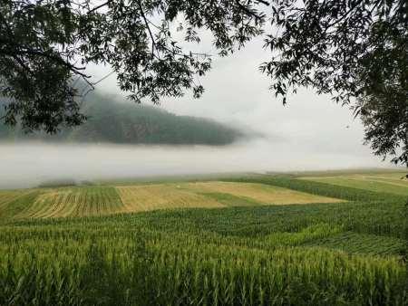 郭记鑫园农家院提供贴心的农家院食宿