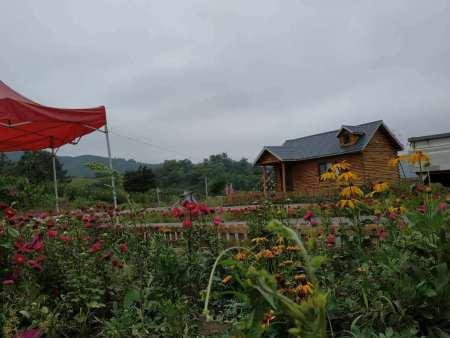 郭记鑫园农家院拥有众多美景美食,等你来赏