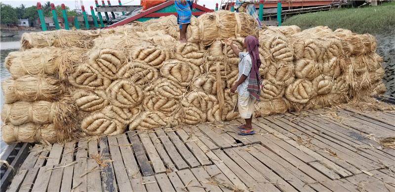 促銷黃麻_價格合理的黃麻沃德東方國際貿易供應