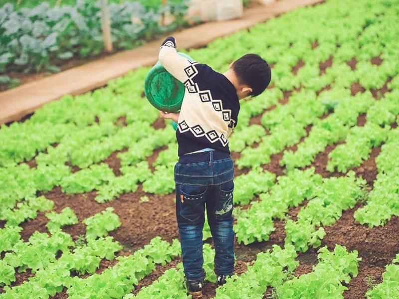 富硒生態農莊