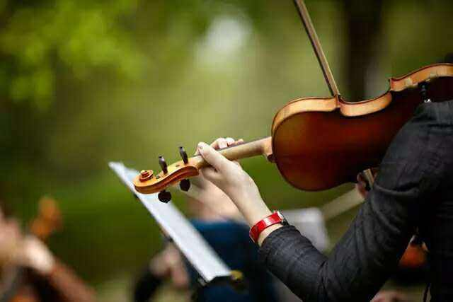 龍崗有經驗的小提琴培訓深圳哪里有資深的小提琴培訓