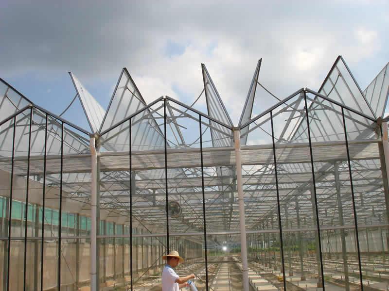玻璃温室-温室大棚以及生产厂家@青州市万红温室园艺工程有限