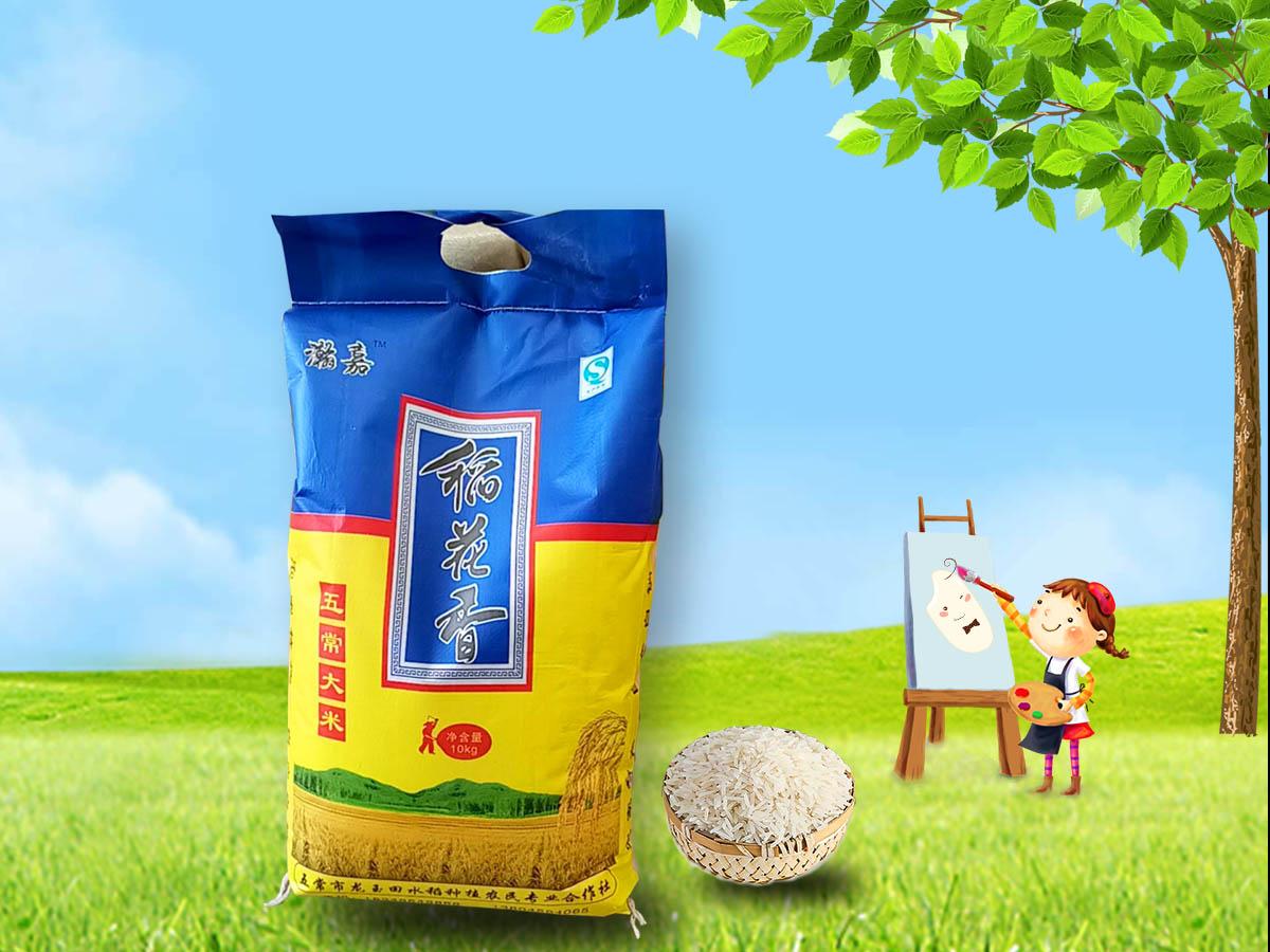 五常大米-实惠的哈尔滨五常大米龙玉田水稻种植供应