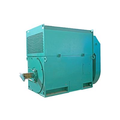 辽宁高效高压电机-北京YX系列高效高压电机厂家直销