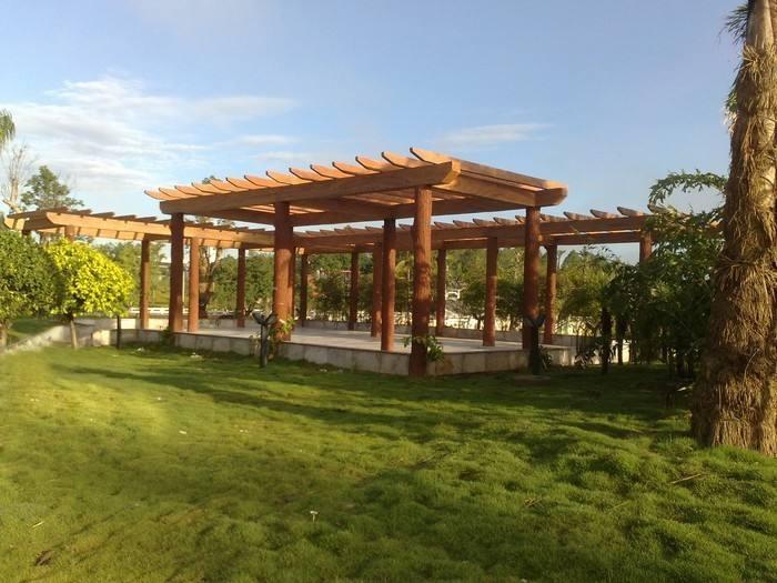 霍尔果斯庭院防腐木花架-新疆耐用的新疆防腐木花架供应出售