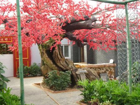 渭南水泥树工程-陕西超值的水泥假树供应