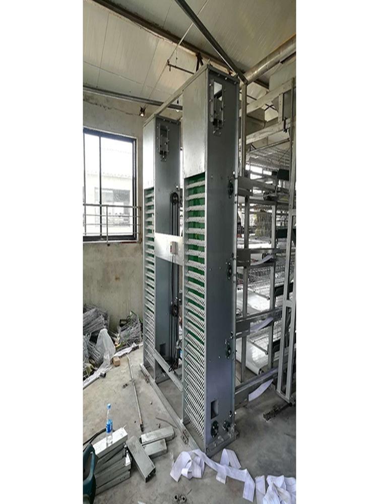 集蛋系统批发商_想买价位合理的集蛋系统,就来金牧阳机械