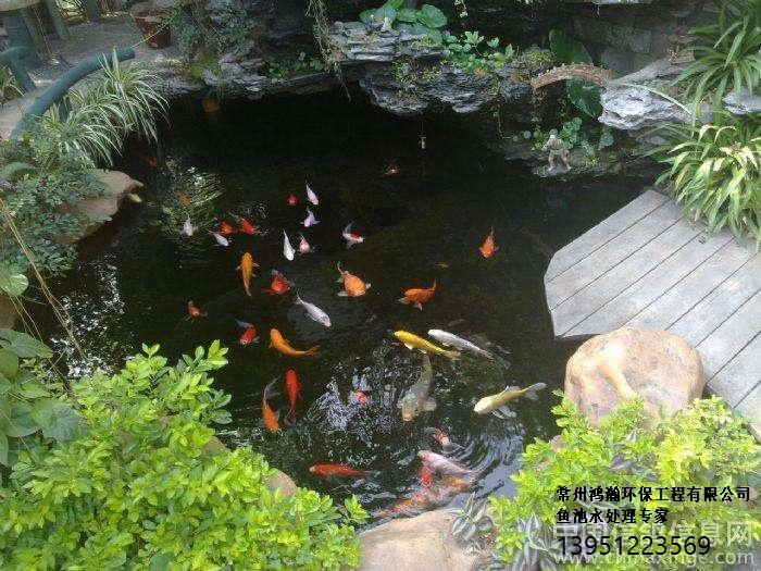 潍坊市别墅鱼池水专业处理。全自动,免清洗!