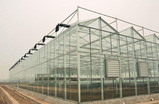【选择我们】纹络式温室大棚建造商|育苗温室大棚价格-诚誉温室