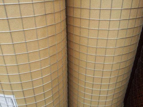 定安劃算的電焊網-海口供應質量好的海南電焊網