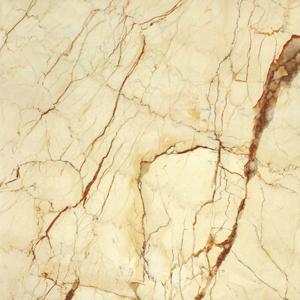 现代瓷砖就选粤强陶瓷