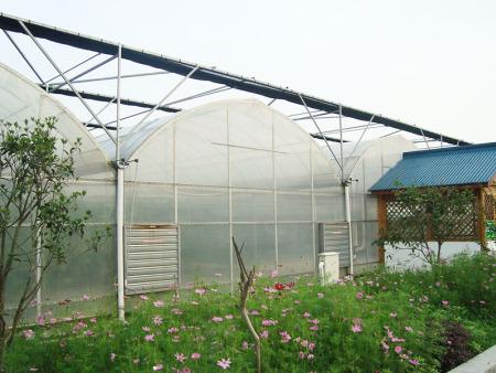 鸽子养殖大棚建造,鸽子养殖大棚价格,鸽子养殖大棚