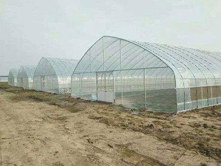 日光温室,日光温室多少钱,日光温室建造商