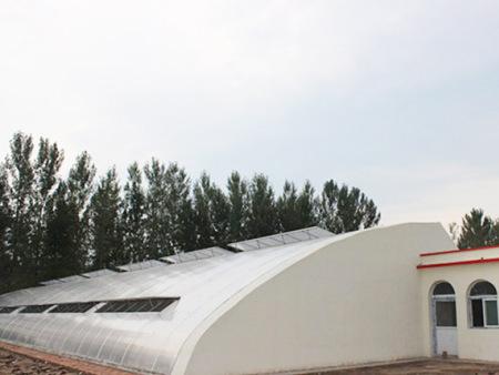 日光温室建造-山东结实耐用的日光温室