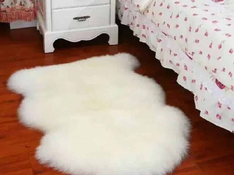 进口地毯品牌——羊毛地毯保养