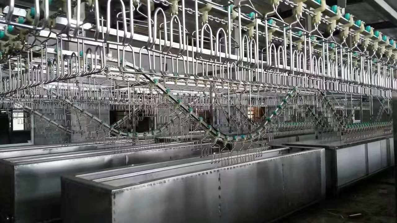 鵝屠宰流水線_報價合理的屠宰流水線博睿食品供應