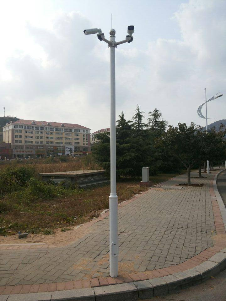 乌海监控立杆|高质量的宁夏监控立杆宁夏星火燎原照明工程供应