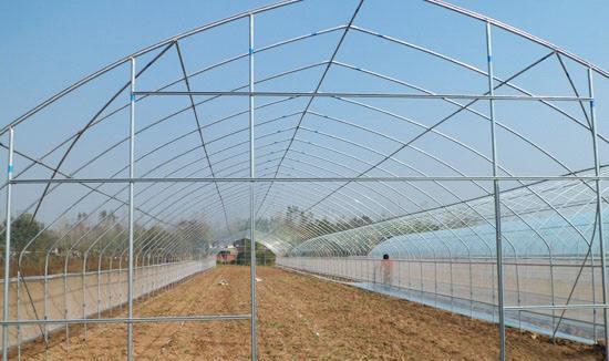 中国促销简易单体温室大棚骨架-供应宿迁性价比高的罗贵园艺