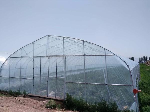 价格合理的简易单体温室大棚骨架|宿迁罗贵园艺哪里有供应